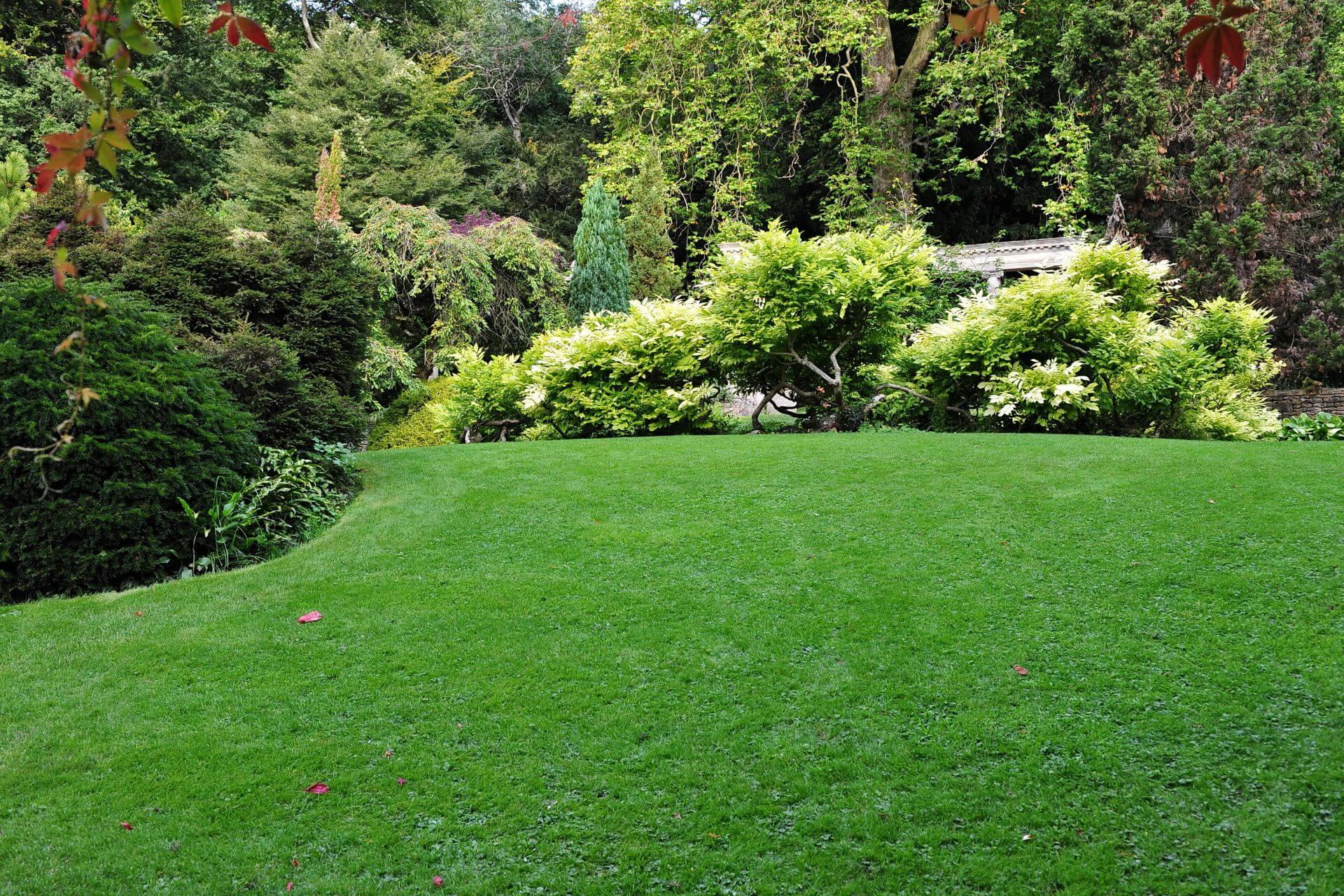 Manutenzione giardini aziendali e condominiali Bologna